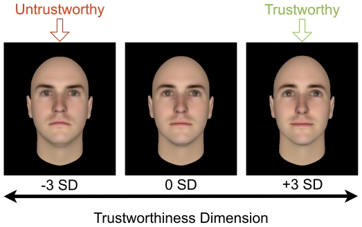 Face-identities-of-the-same-computer-character-varied-on-the-trustworthiness-scale-For